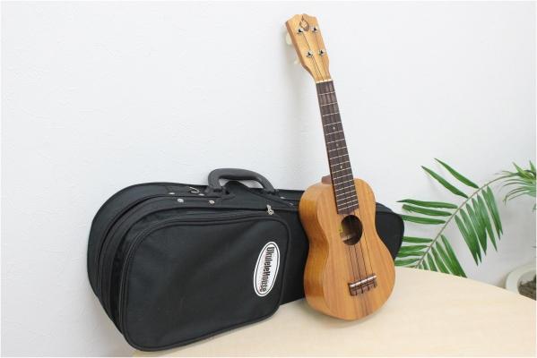 美品 【GString Gストリング】 ukulele ウクレレ Halawa Valleyの買取-20000