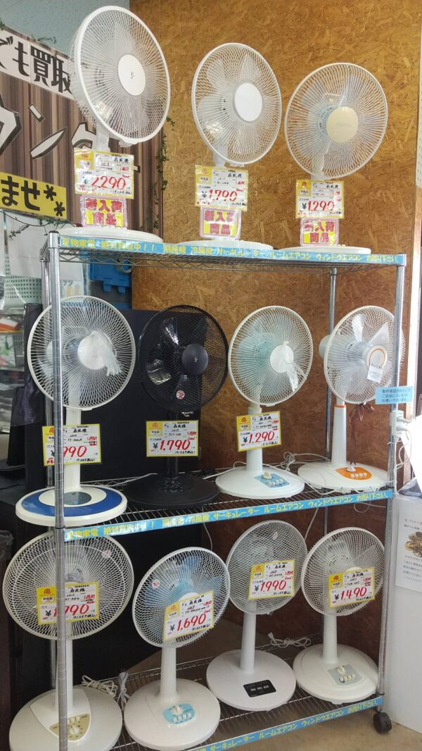 扇風機販売始めました!!今年の夏もコイツで乗り切りましょう♪