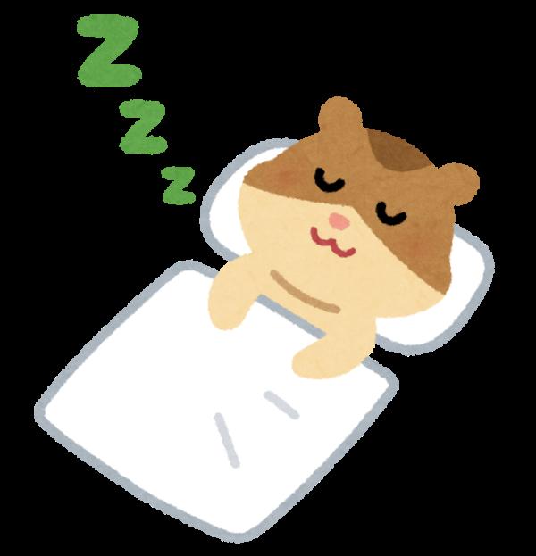 【明日からお休み頂きます ( ˘ω˘ )..zzZ 1/3 まで】リサイクルマート福岡のネット事業部です!